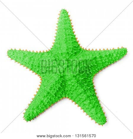 The common Caribbean starfish Oreaster reticulatus. Object isolated on white background. Souvenir from holidays in tropical paradise.