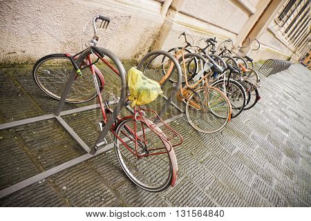 Bikes Parked in the Street - A row of bikes parked on the street