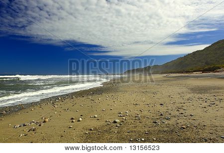 New Zealand West Coast Beach