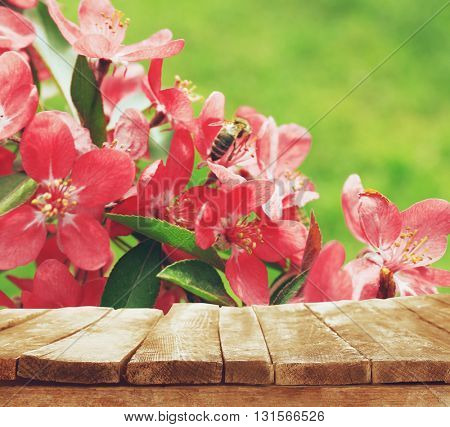 Empty wooden table and  blurred blooming tree on background