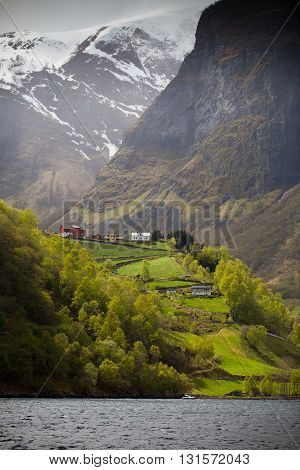 Houses on a steep cliff of a norwegian fjord