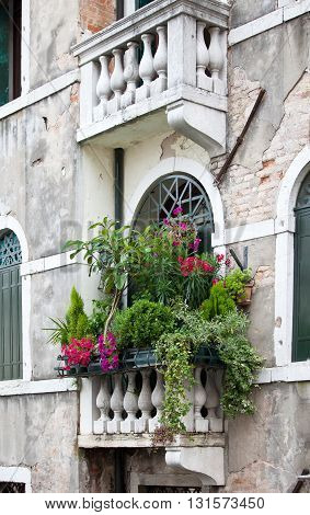 Cozy floral balcony on ancient building in Venice