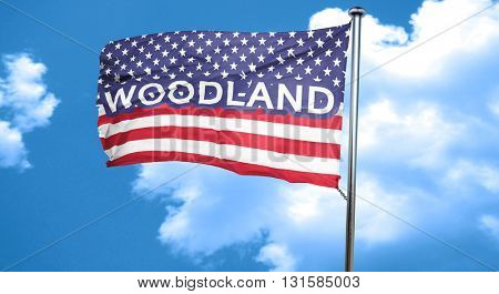 woodland, 3D rendering, city flag with stars and stripes