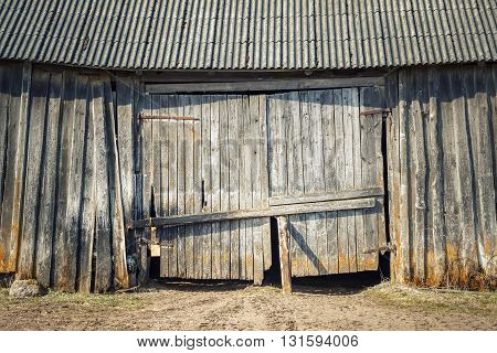 Old weathered shed door in summer day