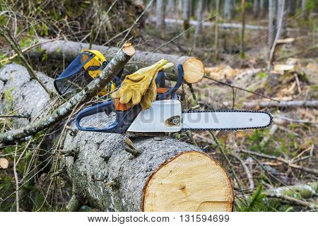 Chainsaw with gloves on tree in destroyed forest