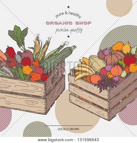 Color organic shop template with fruits and vegetables in wooden crates. Based on hand drawn sketch.