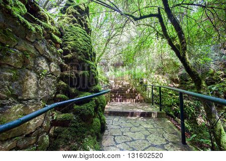 Touristic Footpath In Forest Among Limestones Rocks