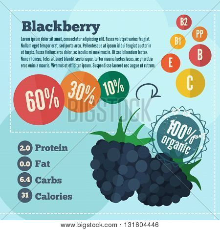 Blackberry and vitamins infographics in a flat style. Vector illustration EPS 10