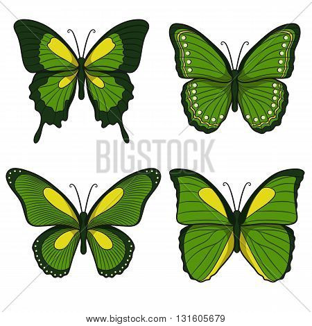Set of green vector butterflies. Isolated objects on a white background