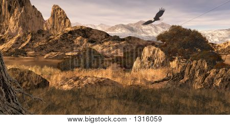 Bald Eagle In The Colorado Rockies