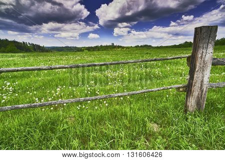View of spring landscape with a meadow behind a fence with sky background