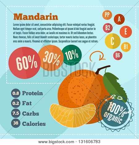 Mandarin vitamins infographics in a flat style. Vector illustration EPS 10
