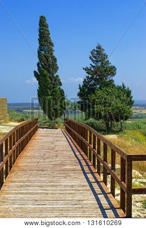 Wooden bridge to the fields. green tree