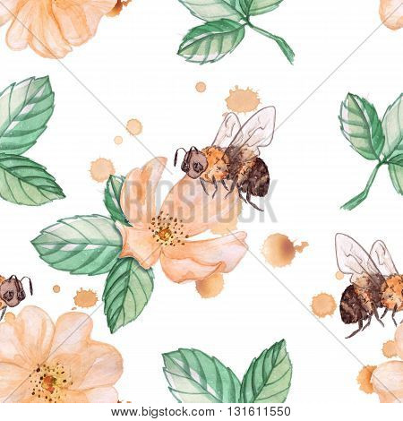 Bee on a wild rose. Seamless pattern. Watercolor. Hand-drawing