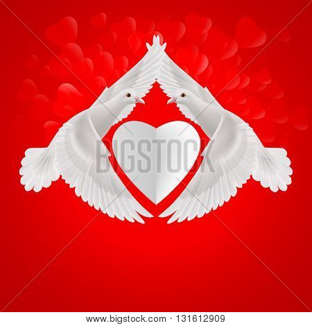 White heart between two flying white doves