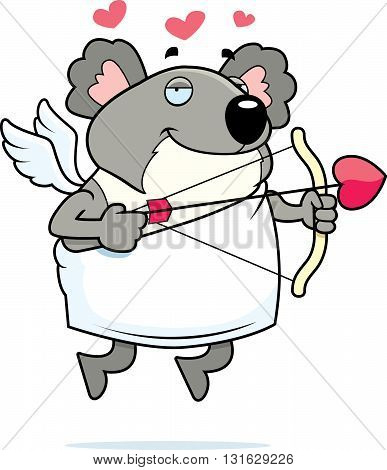Koala Cupid