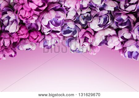 Spring frame with lilac. Background with beautiful flowers of lilac.
