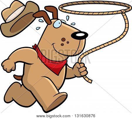 Dog Rodeo