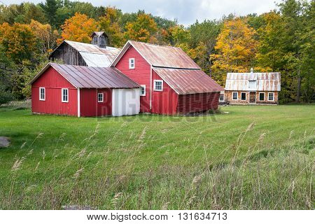 Bright Red barns at Bufka Farm at Sleeping Bear Dunes National Lakeshore surrounded by an autumn background.