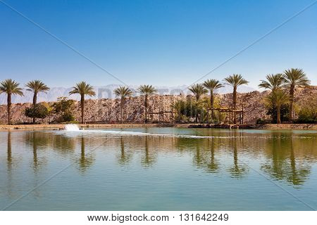 The Timna oasis Lake in Timna National park near to Eilat Israel
