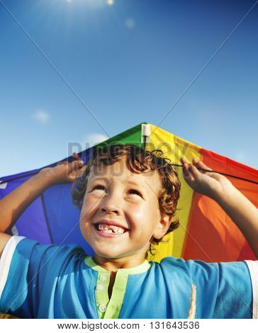 Kite Boy Beach Playful Summer Travel Flying Concept