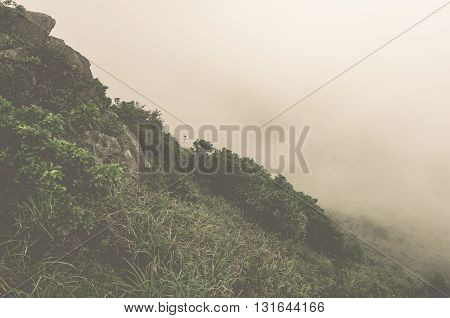 The mist at the mountain in morning