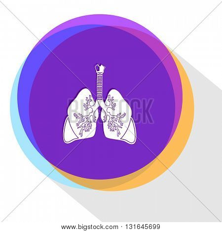 lungs. Vector icon.