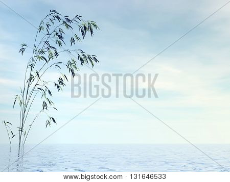 Bamboo and water by day - 3D render