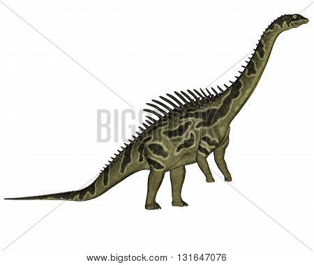 Agustinia dinosaur standing up isolated in white background - 3D render