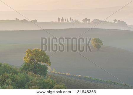 Morning Landscape With Fog
