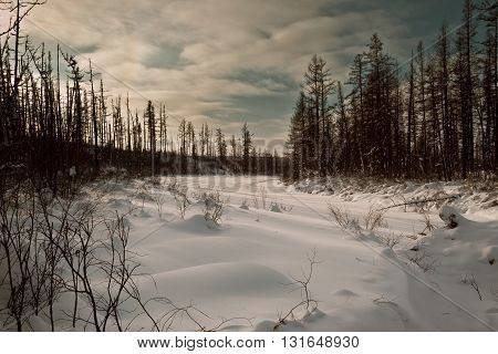 River under the snow in the taiga