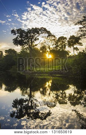 sunrise in jungles on amazon river with reflection in calm water