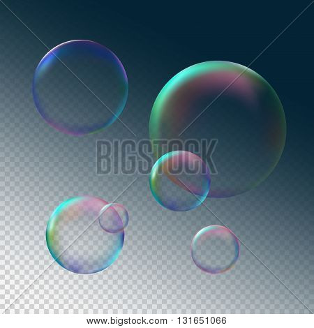 Soap bubble grey black background isolated vector illustration