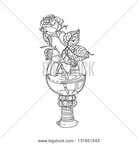still life roses in vintage glass, old masters style bouquet for adult coloring book in zen art therapy style for anti stress drawing. Hand-drawn, vector, dutch masters style, for coloring book