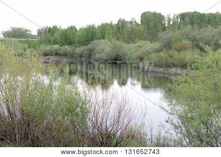 Природа, русской глубинки Поволжья, очень красивый пейзаж