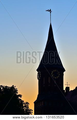Tower of Koenigsberg Cathedral at sunset. Gothic 14th century. Symbol of the city of Kaliningrad (Koenigsberg before 1946) Russia