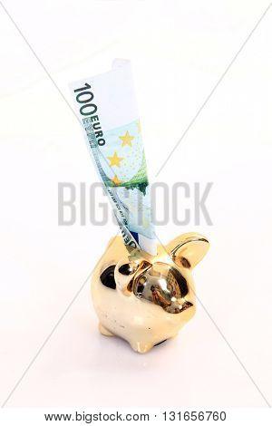 golden pig bank, family sucess, business concept