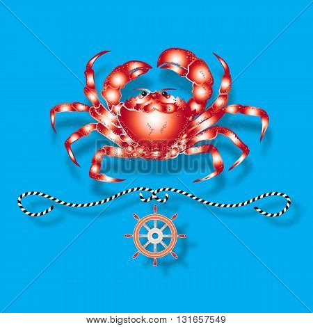 Vector illustration with isolated crab and nautical design elements helm, rope  on blue background.