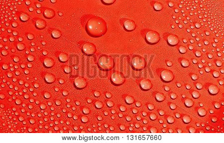 Water drops background. Texture of water drops. Red.