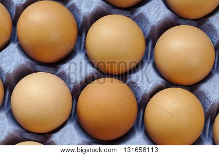 Half a dozen eggs in carton / egg tray.