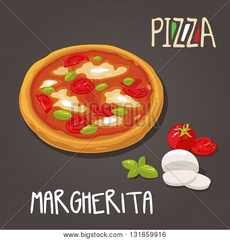 Margherita Pizza with ingredients . Set Isolated vector Flat style illustration