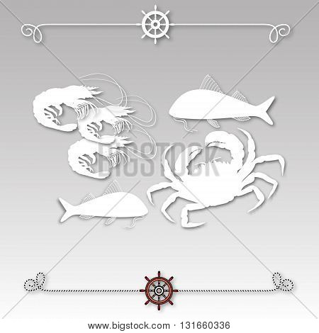 Vector illustration with isolated crab, fishes, shrimps and nautical design elements helm, rope  on grey background.