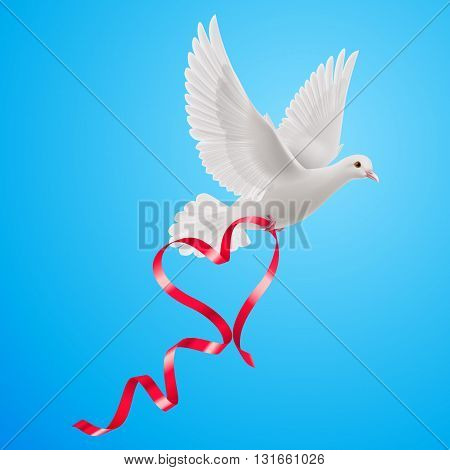 White dove with red ribbon on the blue background.
