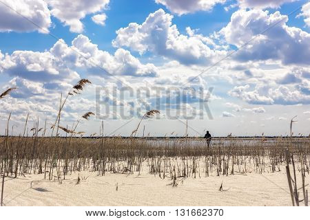 Remote silhouette of a man on a cane sandy beach by the lake under a beautiful cloudy sky.