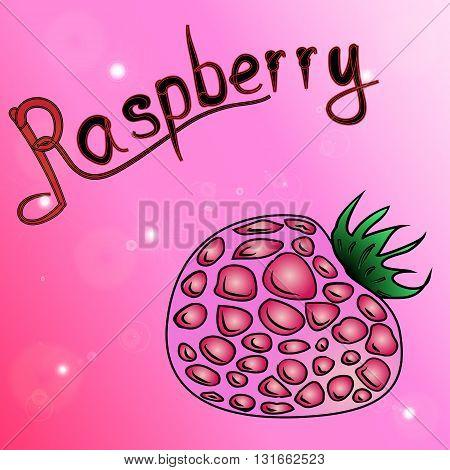 the magenta background of schematically drawn raspberries