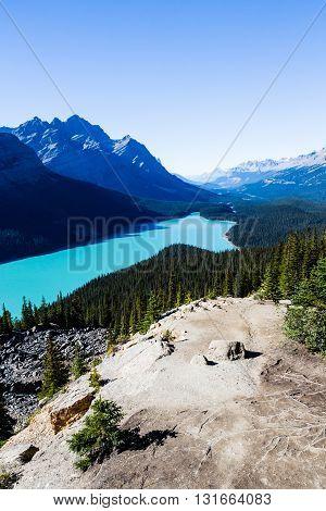Peyto Lake, Banff National Park, Rocky Mountains, Alberta, Canada