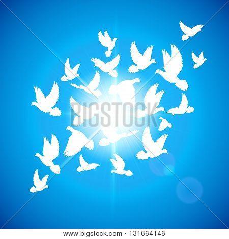 Many white dove fly in blue sky