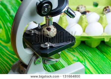 Laboratory microscope scientific research of quail and hen eggs on timber background