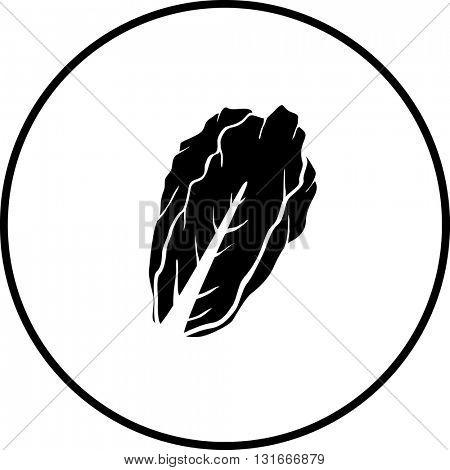 lettuce symbol