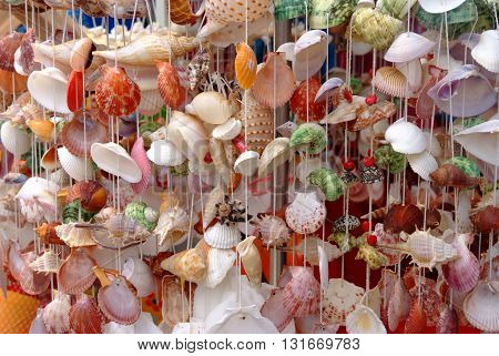 Handicrafts produced by the shell wall, a lot of shell